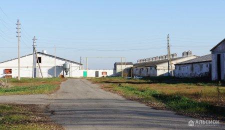 Продам свинокомплекс в Краснодарском крае
