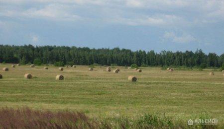 Земля сельхозназначения, 700 га