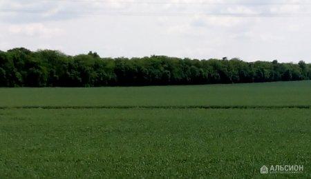Продам земельный участок 800 га