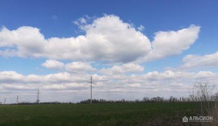 Участок 8 га сельхозназначения, Курганинск